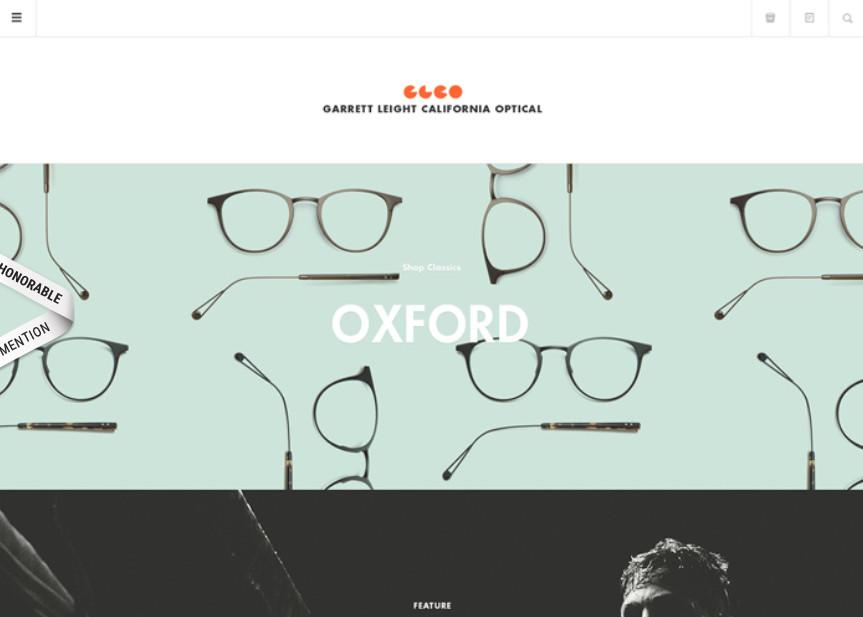Příklad webu z odvětví oční optiky (Kalifornie, USA)
